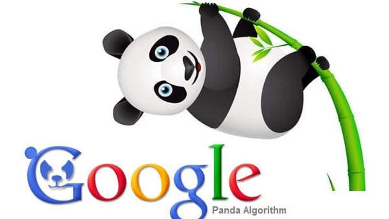 abc-digi-8-thuat-toan-loi-của-Google-panda
