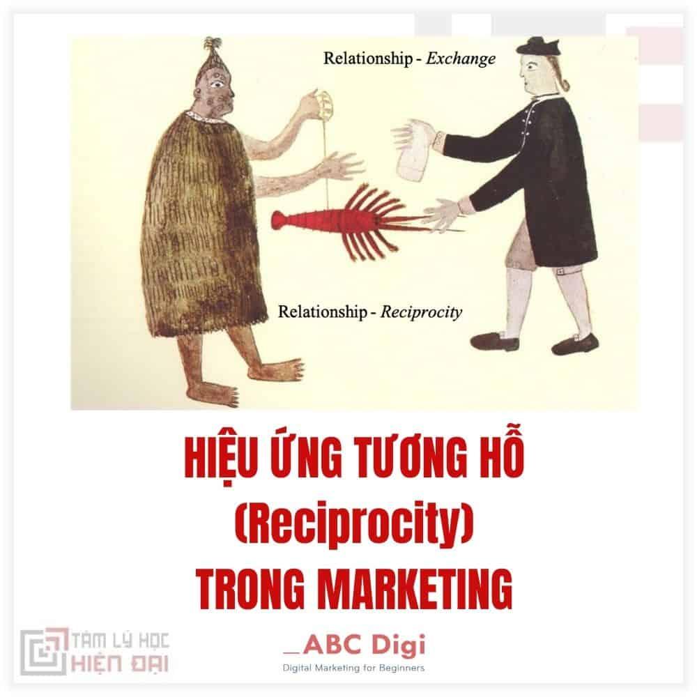 hieu-ung-tuong-ho